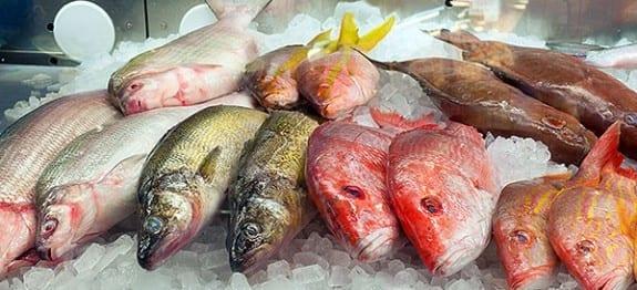 muestra-pescados-azules-blancos