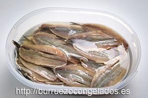 macerar-pescados