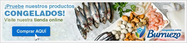 Visite nuestra tienda online de alimentos congelados