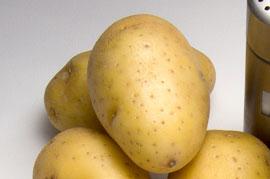 Patata ágata