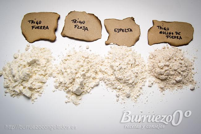 Harina de trigo fuerza, floja, espelta y de trigo molino de piedra